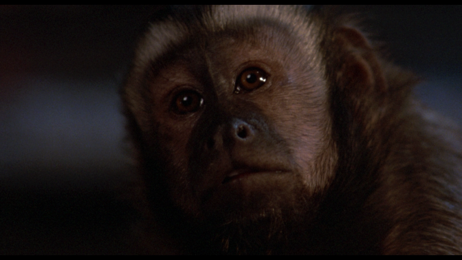 """Monkey Shines"" (1988) REVIEW"