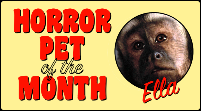HORROR PET OF THE MONTH: Ella!